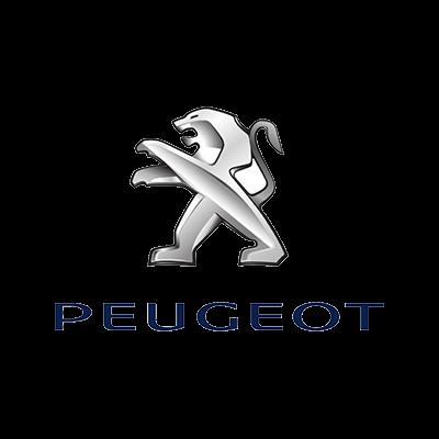 Peugeot reparaties